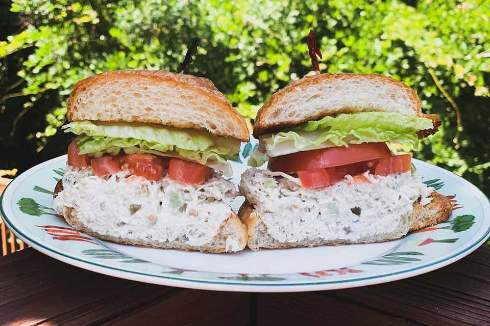 Plot Chickens Salad Sandwich